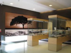 Museu_IMG_2198